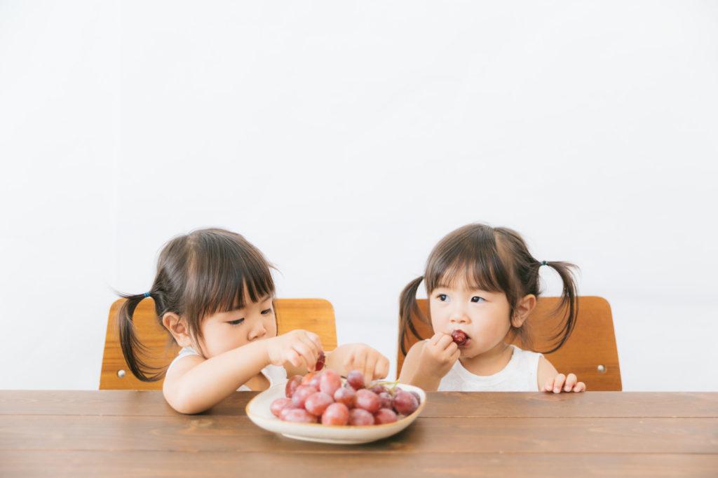 仲良く並んで座ってぶどうを食べる双子の少女仲良く並んで座ってぶどうを食べる双子の少女