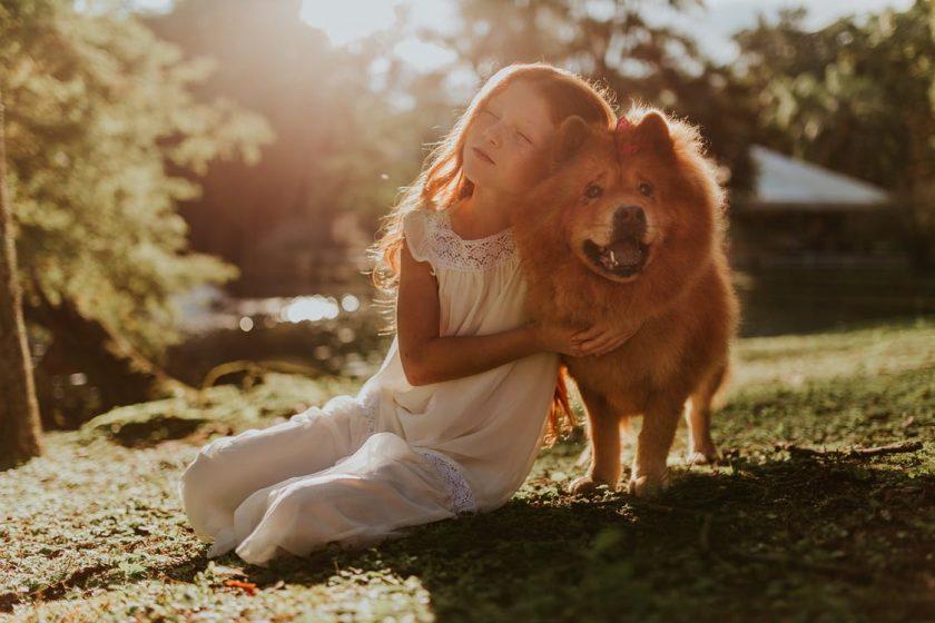 地面に座って犬に寄りかかりながら抱きしめる女の子