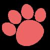 【ネイティブキャンプ体験談ブログ】実践5~6日目 | 英語トーク.jp